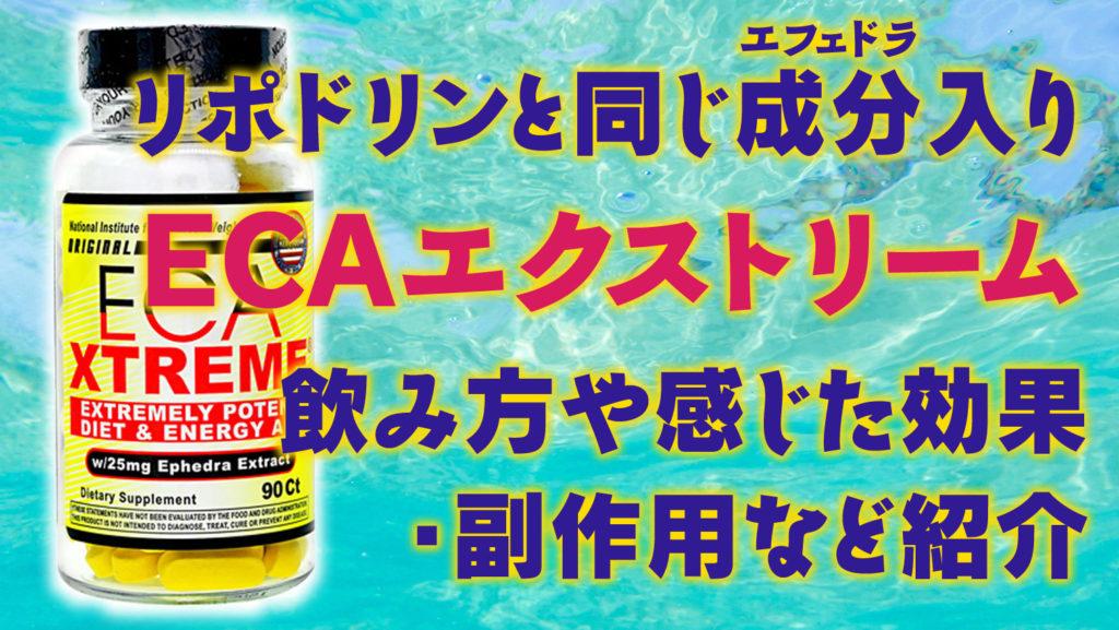 リポドリンと同じ効果エフェドラを含むのに安い!<br />ECAエクストリーム(EcaXtreme)